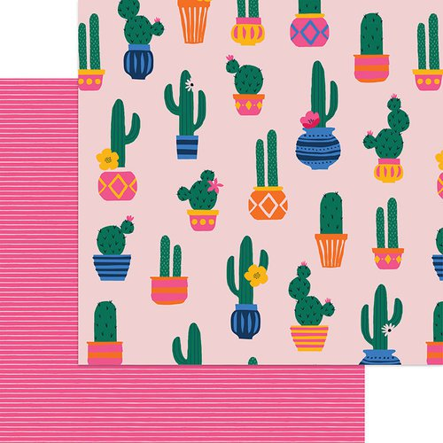 MME_Cactus