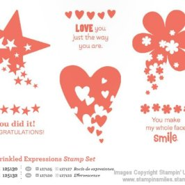Stampin_Up_Sprinkled_Expressions